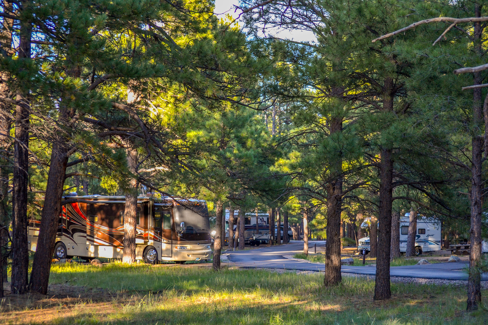 Pine Grove Campground - Roadside Secrets